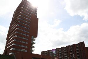 Meerrijk2014-7347
