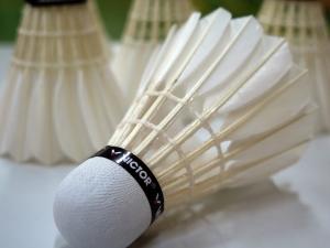badminton-659910_960_720