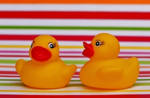 rubber-ducks-1271197_960_720
